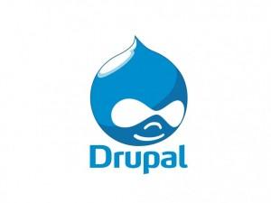 229043_390_drupal1-300x225